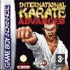 International Karate Advanced GBA Game